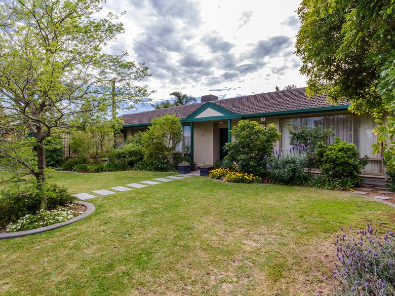 36 Old Drive, Novar Gardens, SA 5040