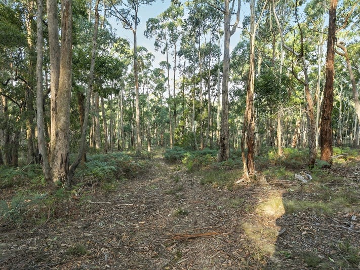 Lot 49 Cemetery Road, Eganstown, Vic 3461