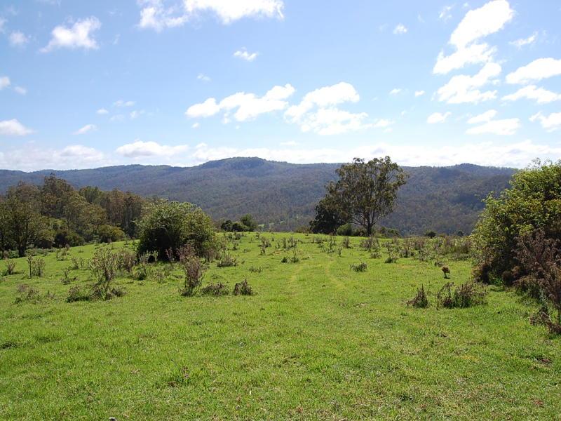 Lt 80 DP751077 Duck Creek Road, Old Bonalbo, NSW 2469
