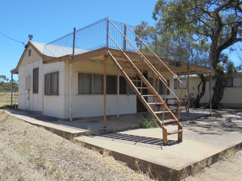 59 Mallee Road, Walker Flat, SA 5238