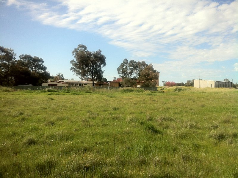 lot 10 Talbot st, Quandialla, NSW 2721