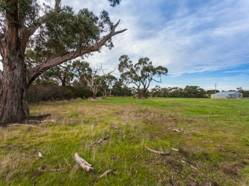 1185 Blackgate Road, Freshwater Creek, Vic 3217