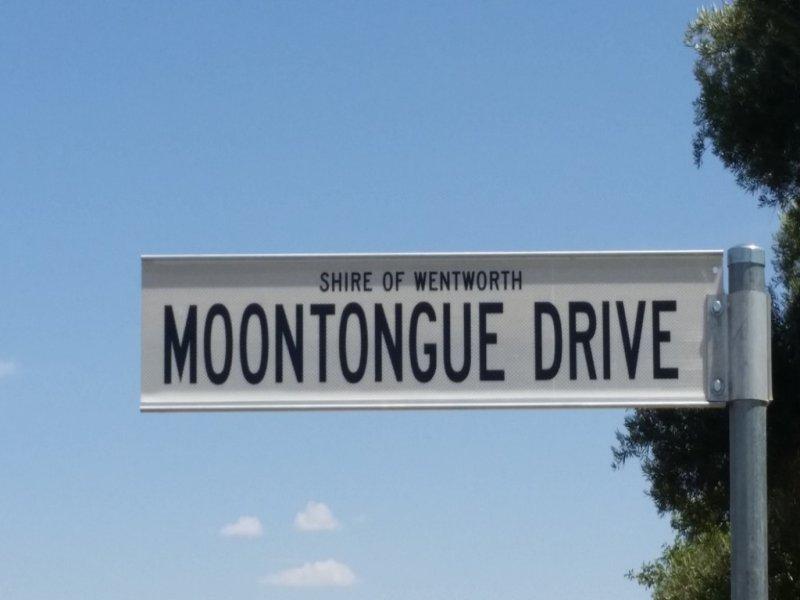 Lot 15 Moontongue Drive, Gol Gol, NSW 2738