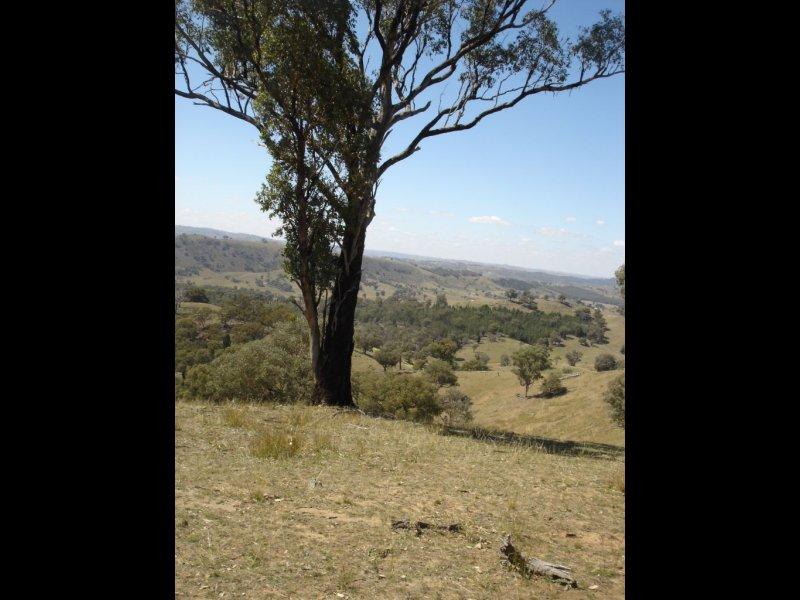 Lot 7 Taylors Flat Road, Taylors Flat, NSW 2586