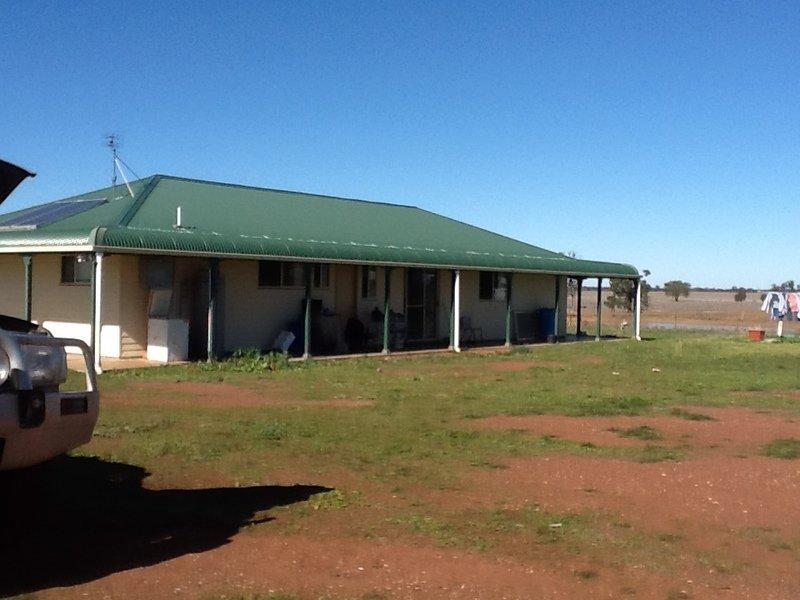 878 Trundle Bruie Plains Road, Bruie Plains, NSW 2875