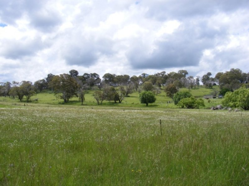Reeves Road, Llangothlin, NSW 2365