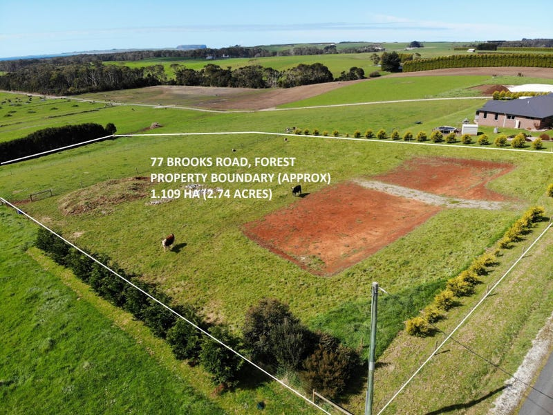 77 Brooks Road, Forest, Tas 7330