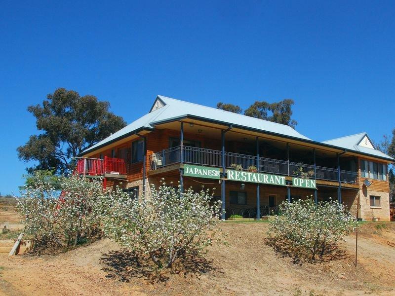 Blue Gum Anderson Lane, Cowra, NSW 2794