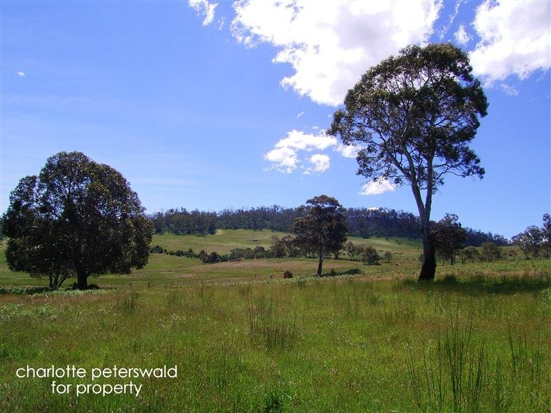 1109 Marked Tree Road, Hollow Tree, Tas 7140