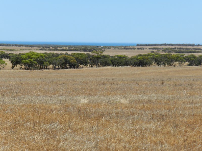 Haslam Dog Fence Road, Streaky Bay, SA 5680