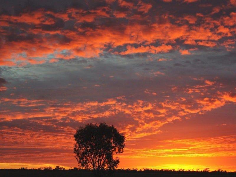 1 Borehead Road, Lightning Ridge, NSW 2834