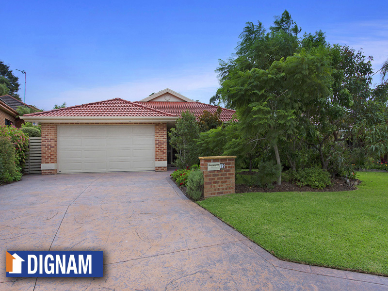 12 Brian Street, Fairy Meadow, NSW 2519
