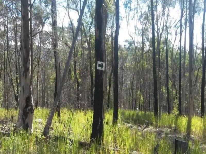 Lot 144 Sugarbag Road, Tabulam, NSW 2469