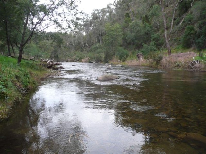 Lot 2 Lower Dargo Road, Dargo, Vic 3862