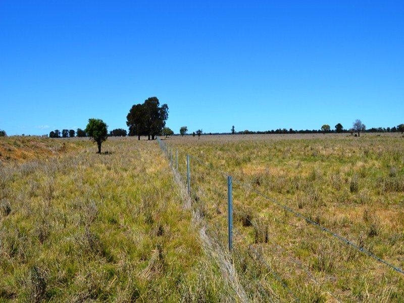 119 Womera Creek Road, Wee Waa, NSW 2388