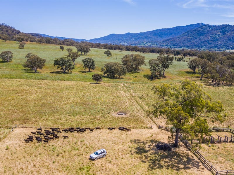 210 Stock Route Rd via Murrurundi, Blandford, NSW 2338