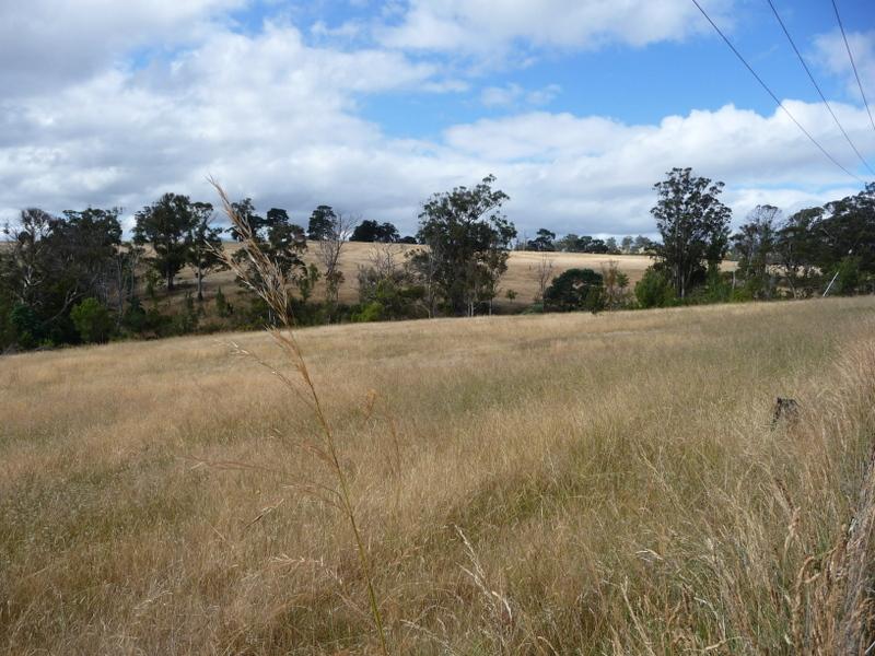 Lot 1 Delmore Road, Wattle Hill, Tas 7172