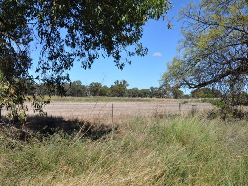 Address available on request, Trewilga, NSW 2869