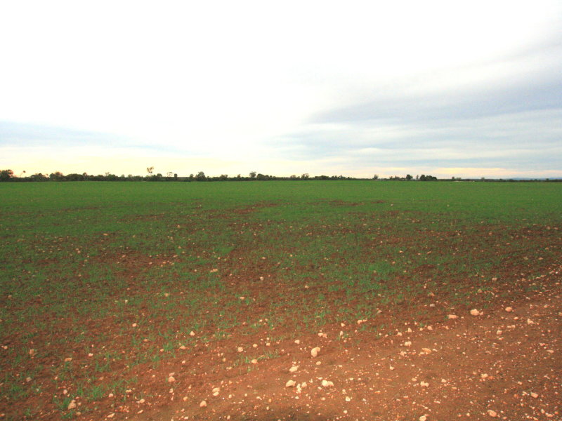 Lot Sect, 132 Hundred Of Kadina, Kadina, SA 5554