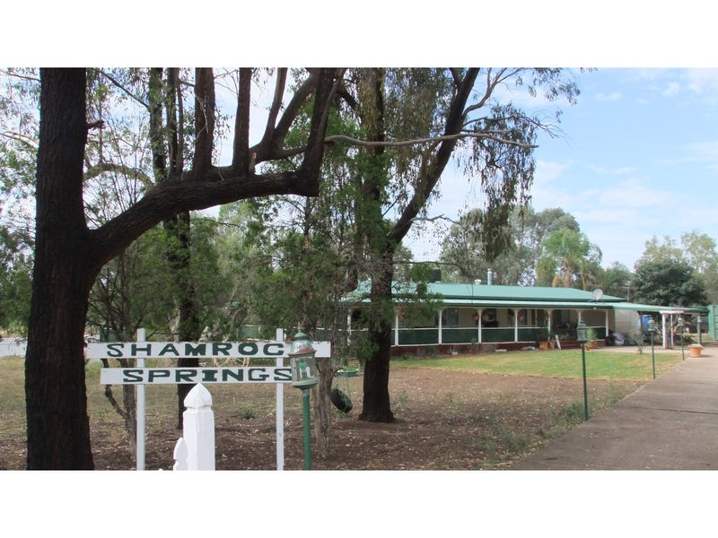 65 Reading Road, Gunnedah, NSW 2380