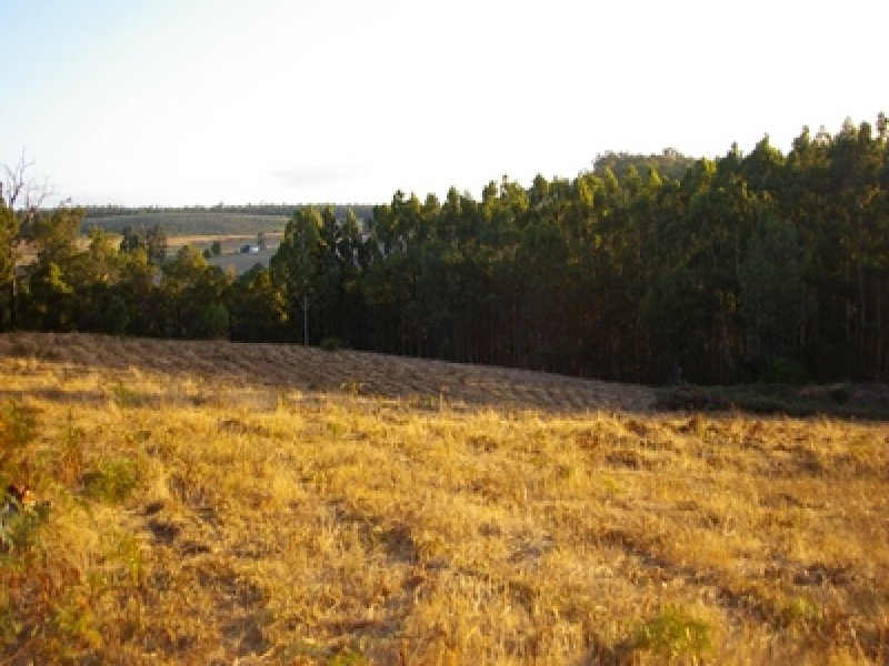 Lot 7 Graphite Road, Nannup, WA 6275