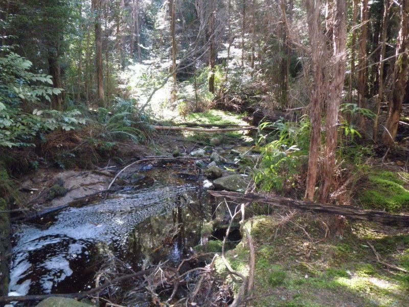 1050 Loyetea Road, Loyetea, Tas 7316