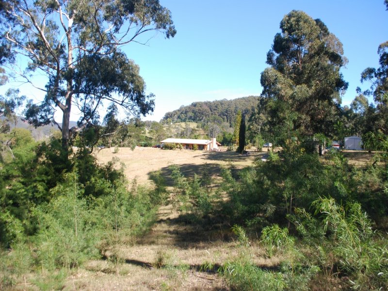 171 Back Creek Road, Nethercote, NSW 2549