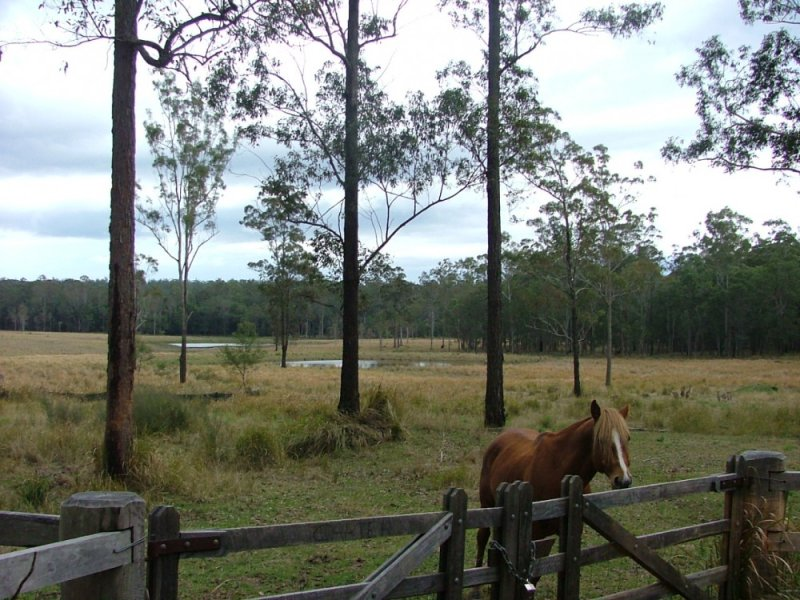 Lot 41 Browns Road, Halfway Creek, NSW 2460