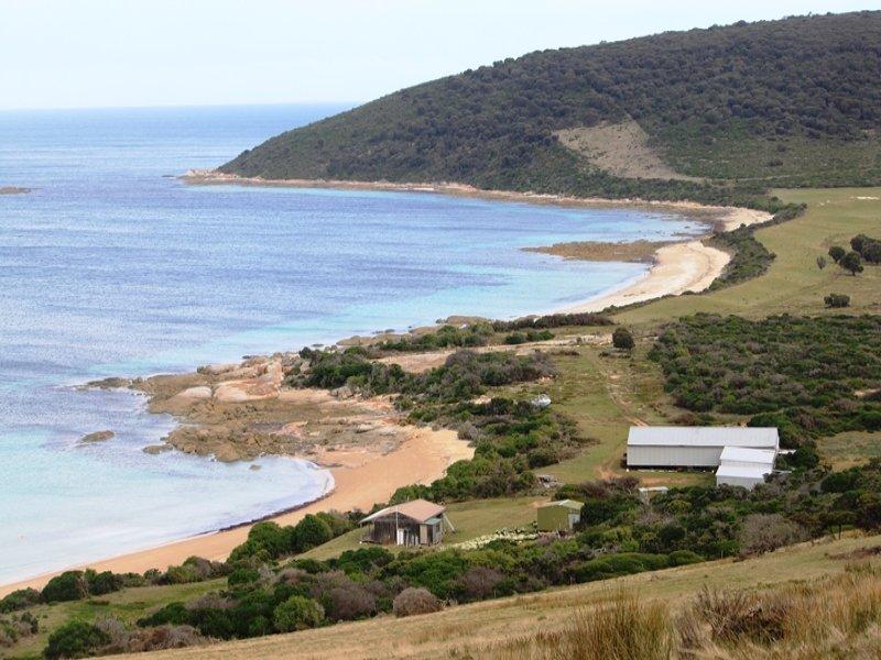 . Prime Seal Island (Bass Strait), Memana, Tas 7255