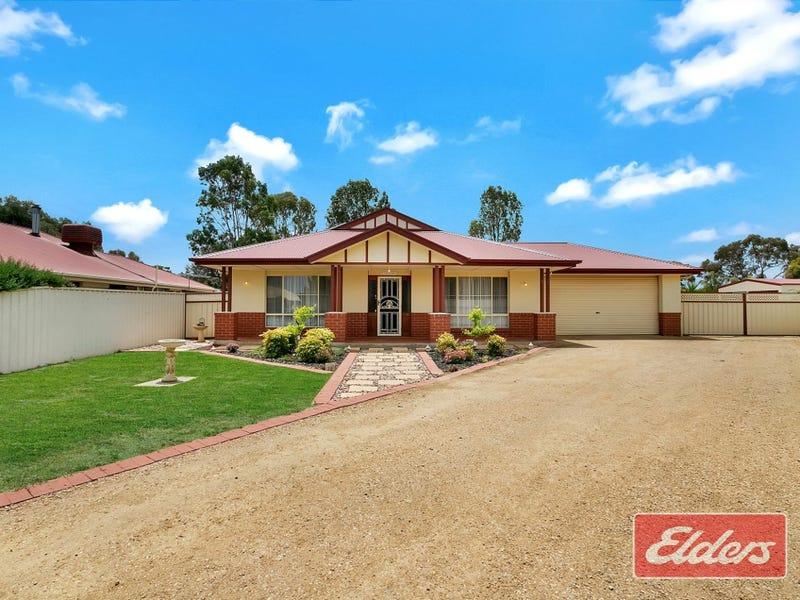 16 Meadow Lane, Roseworthy, SA 5371