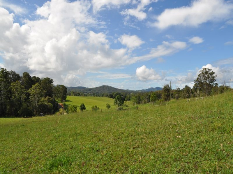 Lot 101 Grandis Glen, Congarinni North, NSW 2447