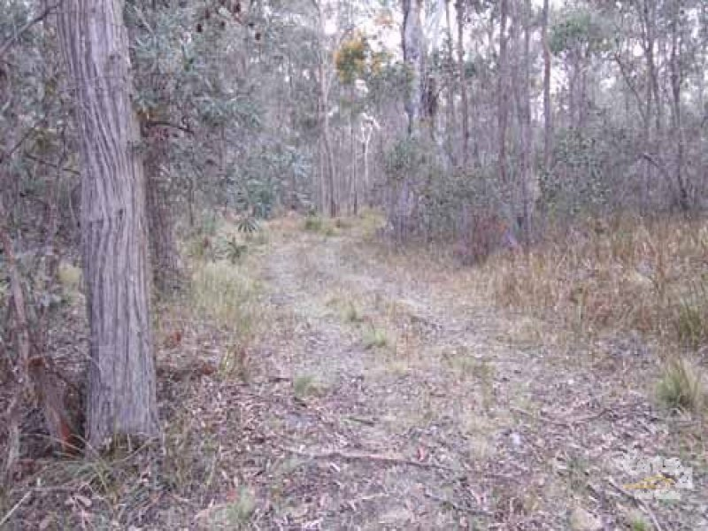 Lot 12 Sara River road, Mount Mitchell, NSW 2365