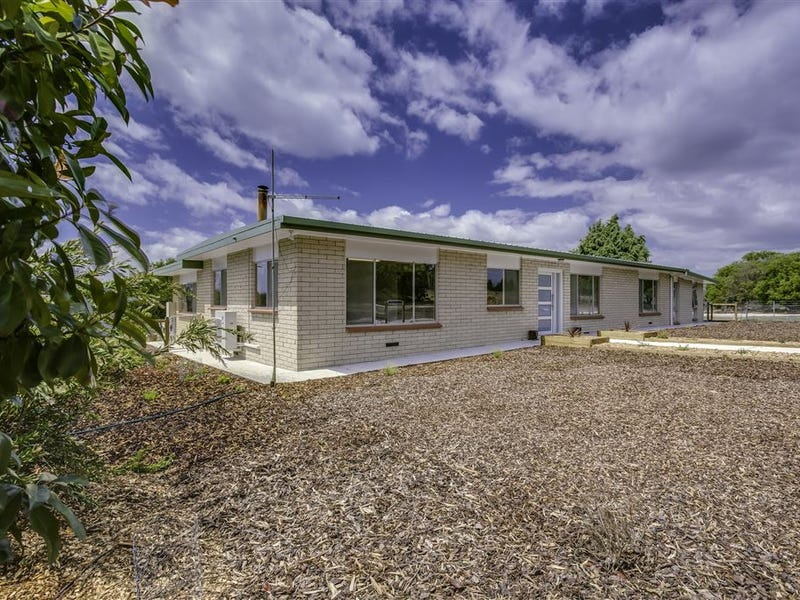 1262 Bridport Road, Bridport, Tas 7262
