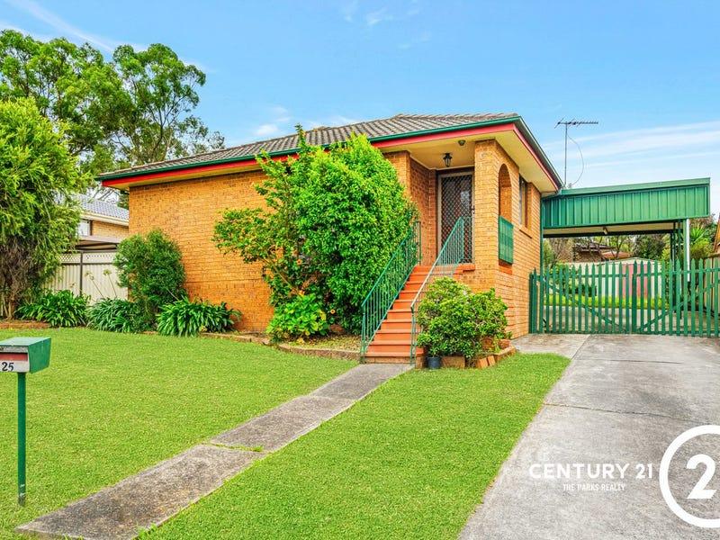 25 Bougainville Avenue, Bossley Park, NSW 2176