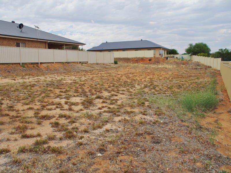 12 Ian Drive, Paringa, SA 5340