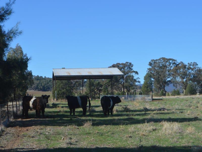 54 Hillview Lane, Eugowra, NSW 2806