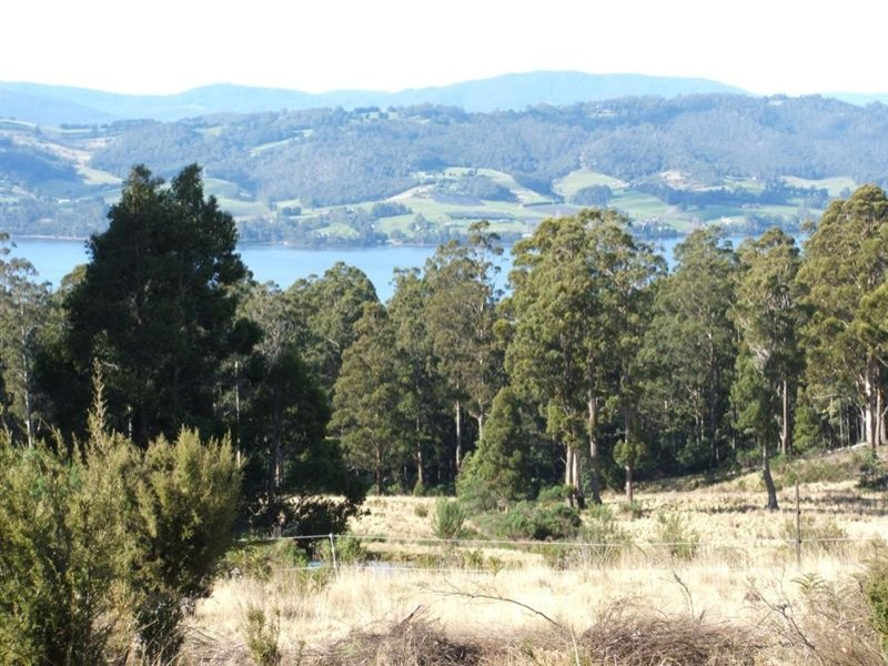 Lot 1/350 Harwoods Road, Castle Forbes Bay, Tas 7116