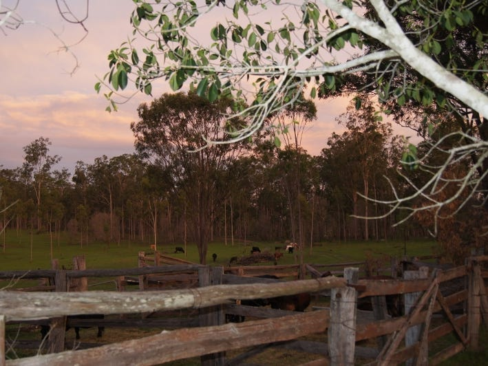 Lot 65 Forty Road, Brooweena, Qld 4620