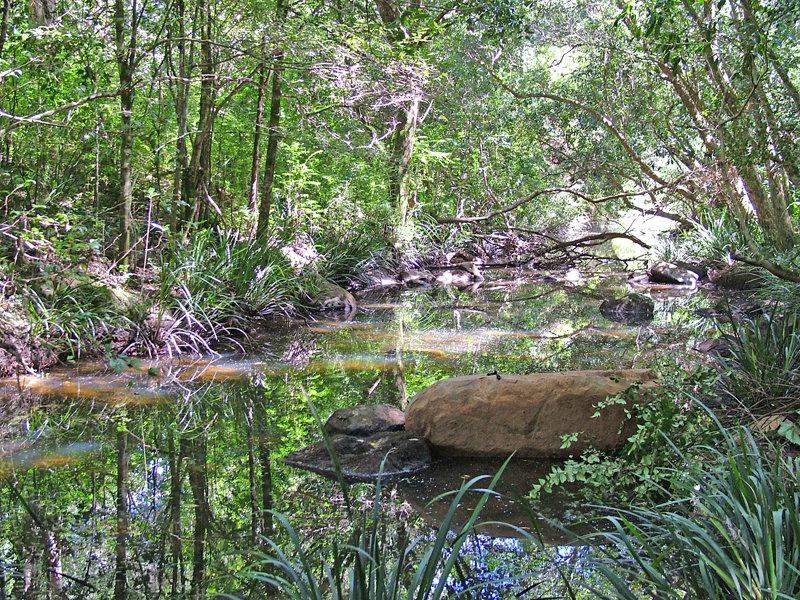 2097 Waukivory Road, Waukivory, NSW 2422