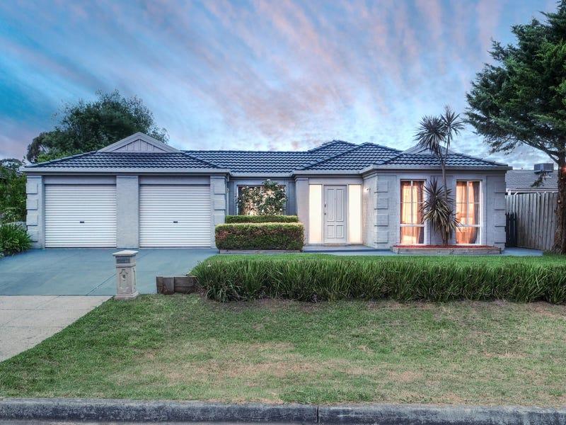 24 Darcy Niland Crescent, Lynbrook, Vic 3975