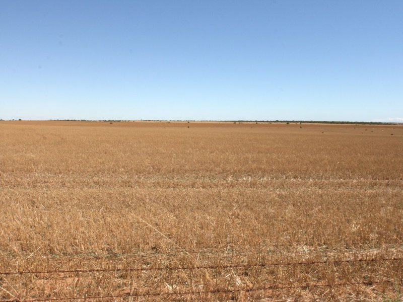 Sect 321 & 322/ Allot 2 Hundred of Inkerman, Inkerman, SA 5550