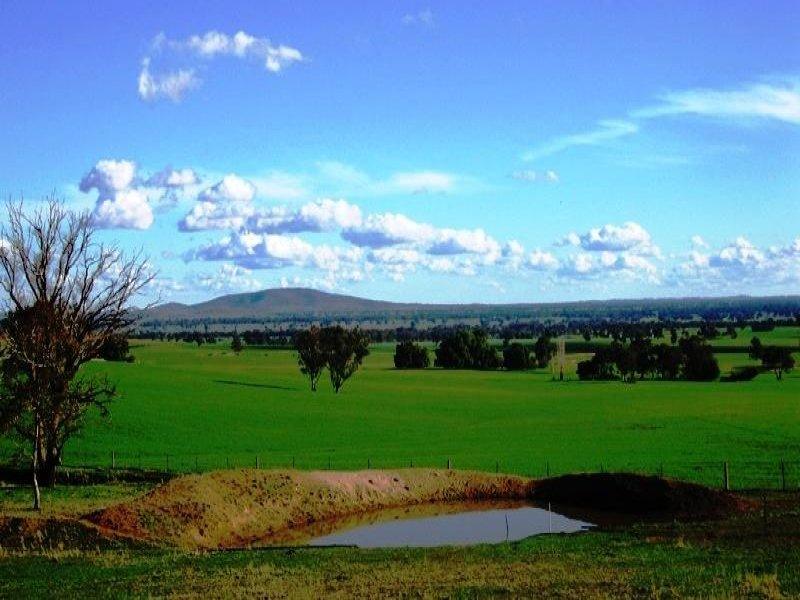 118 Mullemblah Road, Walbundrie, NSW 2642