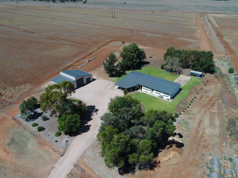 Farm 2149 Houghton Road, Whitton, NSW 2705