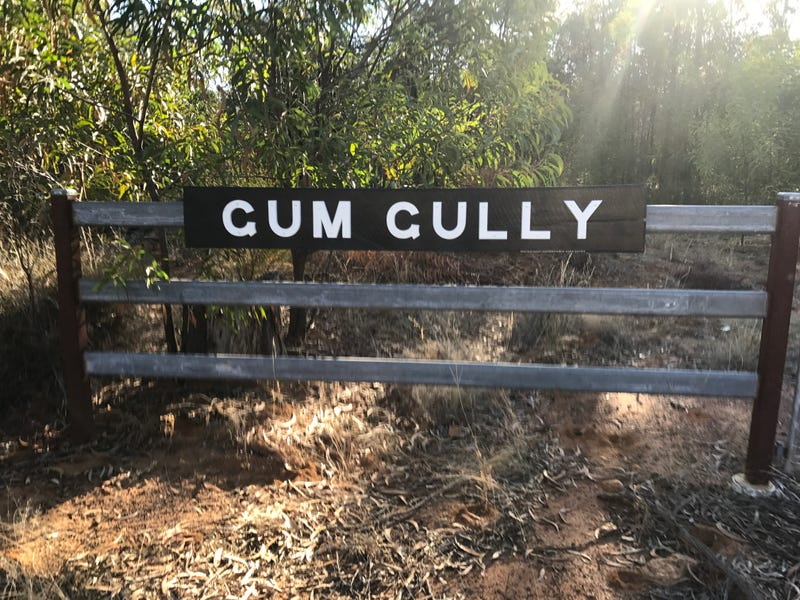 "- ""Gum Gully"", Drillham, Qld 4424"