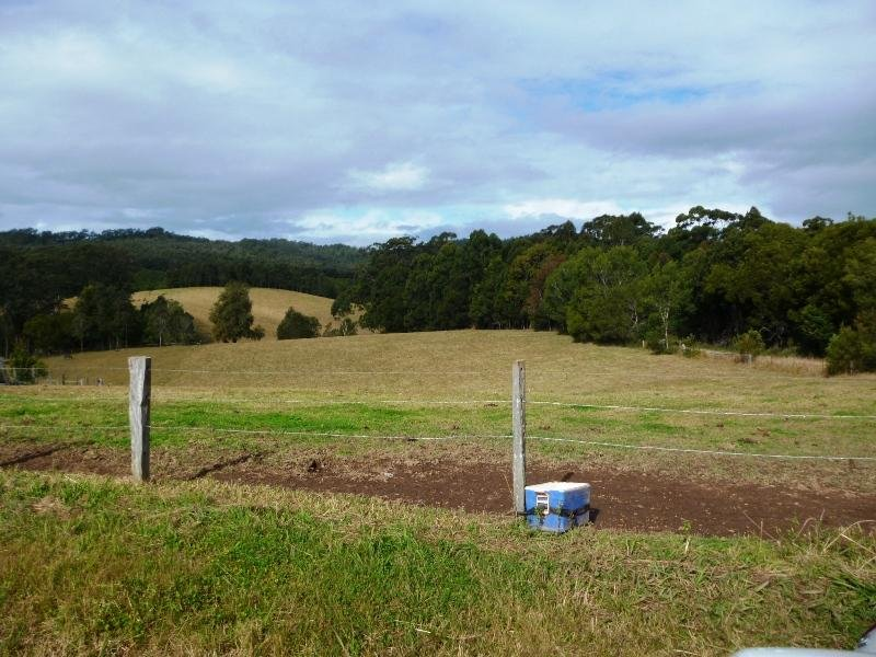 Lot 6 Parkins  Close, Warrell Creek, NSW 2447
