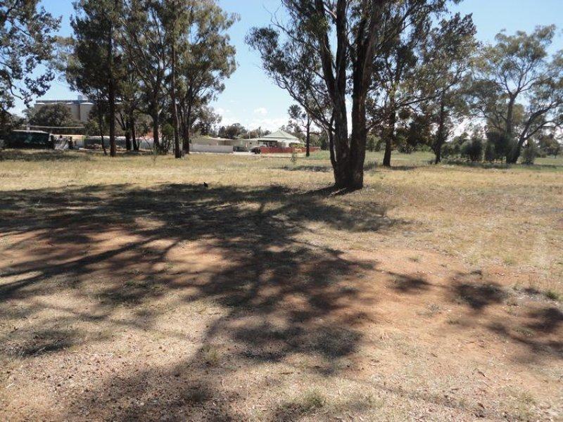 11 Hopetoun Street, Ariah Park, NSW 2665