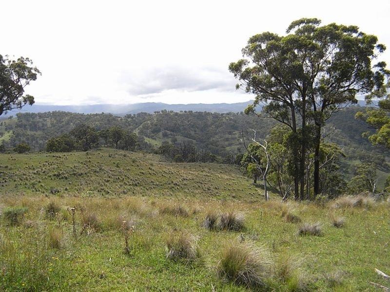 Wheelihans Creek, Timor Road, Timor, NSW 2338