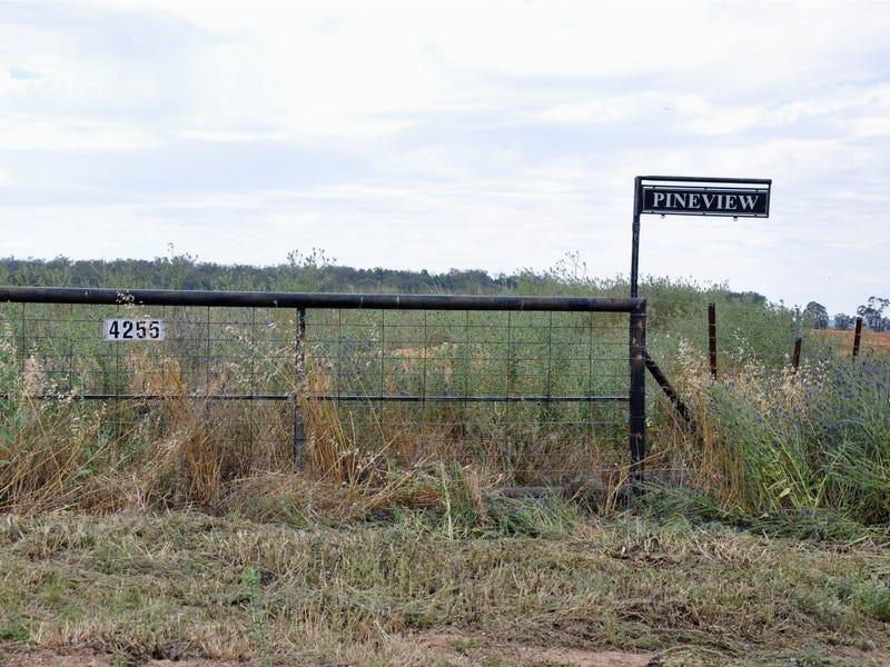 4255 Neilrex Road, Neilrex, NSW 2831
