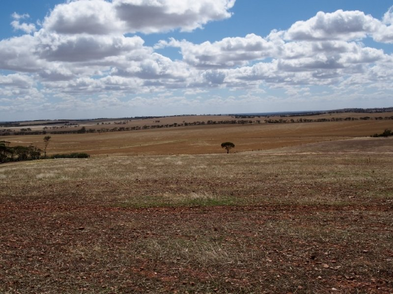 0 Australia Plains Rd, Eudunda, SA 5374