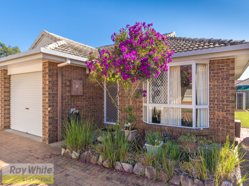 16 Marshall Court, Brendale, Qld 4500